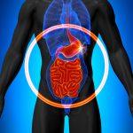 11 najlepších spôsobov, ako zlepšiť svoje trávenie