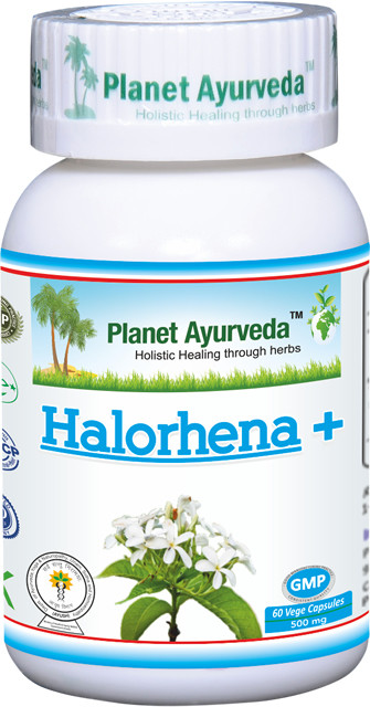 Kutaj Kapsuly (Halorhena +) planet ayurveda