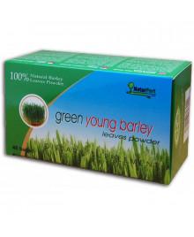 mladý zelený jačmeň porciovaný naturport