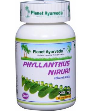 Planet Ayurveda Chanca Piedra extrakt 10:1 500 mg 60 kapsúl