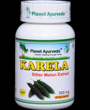 Planet Ayurveda Karela (Horká tekvička) extrakt 10:1 500 mg 60 kapsúl
