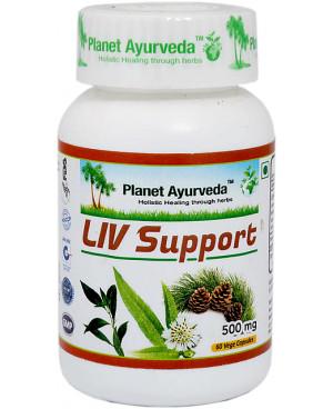 Planet Ayurveda Liv Support (Pečeň) extrakt 500 mg 60 kapsúl