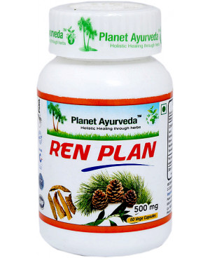 Planet Ayurveda Ren Plan (Obličky) extrakt 500 mg 60 kapsúl