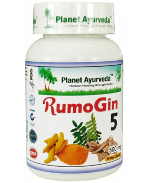 Planet Ayurveda RumoGin5 500 mg 60 kapsúl