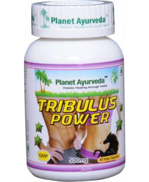 Planet Ayurveda Tribulus Power 60 kapsúl